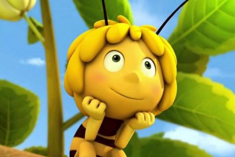 Программа детского праздника «Пчелка Майя»
